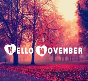 hello, love, november, quote, saying, text