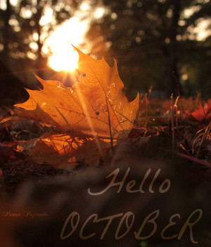 Hello October. by panna-poziomka