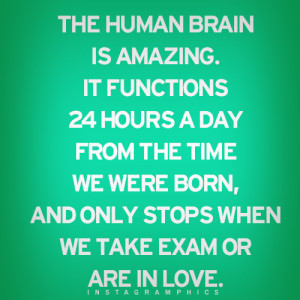 The Human Brain Is Amazing Quote Graphic