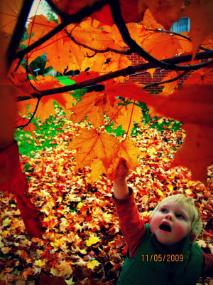 Fall Pictures With Quotes ~fall quotes and images