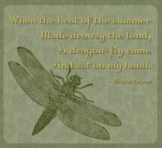 dragonfly with quote more holtz butterflies dragonflies dragonflies ...