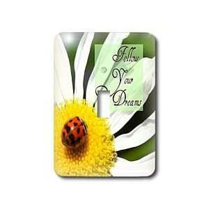 Follow Your Dreams Ladybug and Daisy Flower Inspirational Quotes
