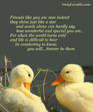 Friends like you are rare indeed
