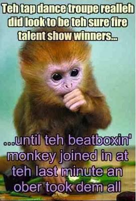 47 am funny monkey funny monkey pics funny monkey quotes funny monkey ...