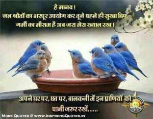 Save Birds, Keep water for them, Animals Quotes, Thoughts, Suvichar ...