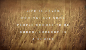 The Cure For Boredom Is Curiosity