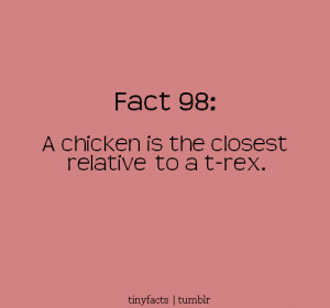 chicken is the closest Relative to a T- Rex – Fact Quote