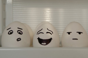 Quotes about eggs | Funny egg jokes
