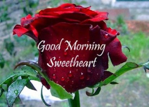 Sweet Romantic Good Morning Wallpaper2,cute good morning quotes for ...