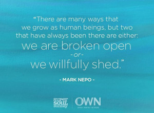 Love this quote by Mark Nepo