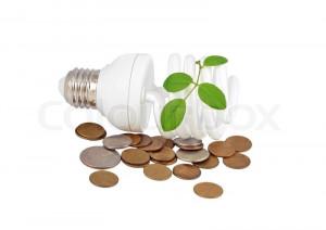 Energy saving light bulb, money and plant on white, stock photo