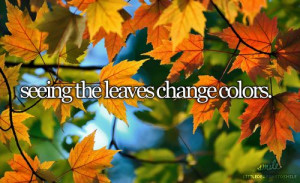 Seeing the leaves change color
