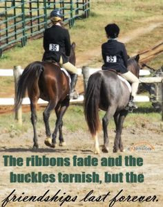 Horse Quotes About Friendship D41d97ccae2bb3d7f0236e4f65dd3 ...