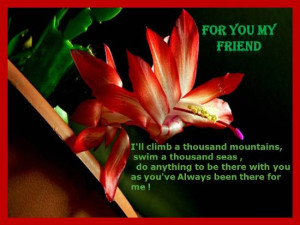 dear friend friendship love quotes for dear friends on your best ...