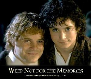 every frodo and sam relationship