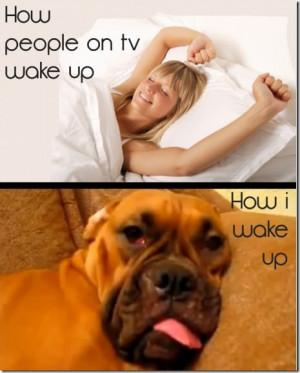 Despertarse por la mañana - La gente en la televisión ME vs