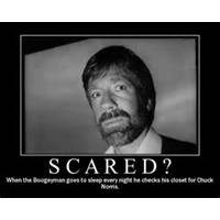 chuck norris quotes chuck norris funny quotes 750x600