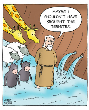 Funny Picture - Noah's Ark