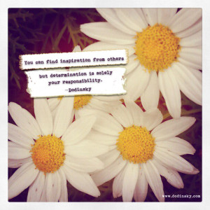 Daisies Daisy Love You Quote...