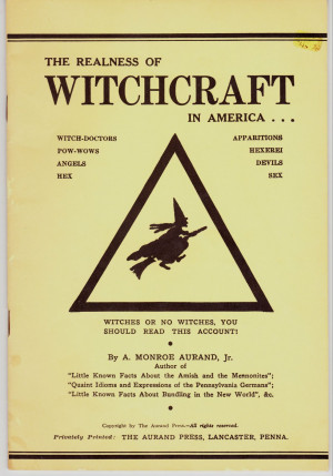 The book begins with a broad outline of the history of witchcraft ...