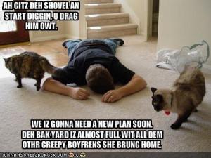 Cats Dispose Of Bad Boyfriends