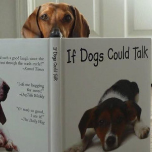 If dogs could talk...