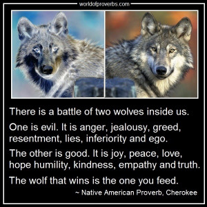 Native American Wolf Quotes Native american proverb