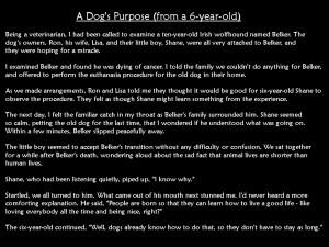 dog's purpose…