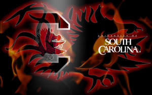 South Carolina Gamecocks Picture