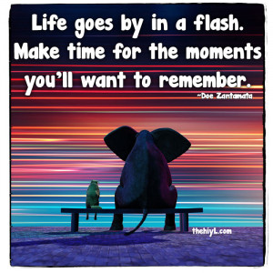 Life goes by in a flash.