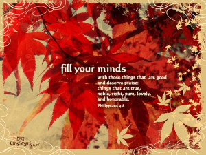 Fill Your Minds Wallpaper
