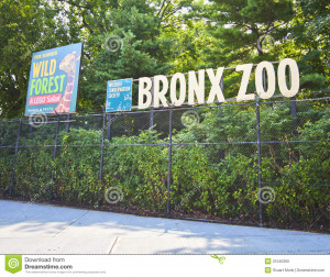 Zoo Tanda Florida Voted The