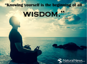 """Knowing yourself is the beginning of all wisdom."""" - Aristotle"""