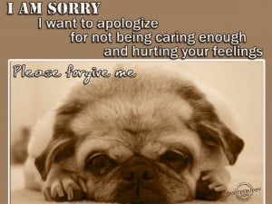 am sorry I want to apologize for not being caring enough