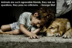 via animal world photo via bark raving mad about dogs