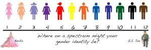 Gender Identity Test results