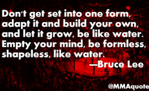 ... one form adapt it and build your own and let it grow be like water