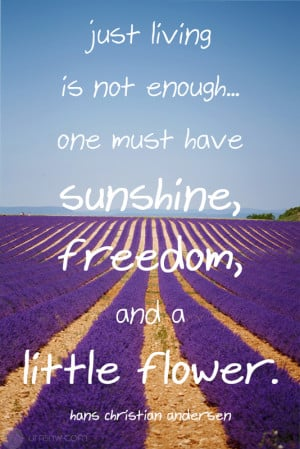 Just living is not enough… one must have sunshine, freedom, and a ...
