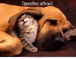 Opposites attract.