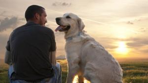 Man-dogs-best-friend