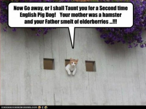 funny-cat-pictures-now-go-away-or-i-shall-taunt-you-for-a-second ...