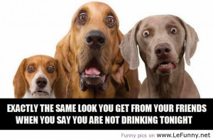 Funny Drinking Quotes And Sayings Funny Quotes About Drinking