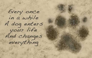 ... your-life-quote-lovely-cute-puppy-love-animals-pics-sayings-images.jpg