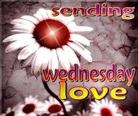 Wonderful Wednesday Quotes