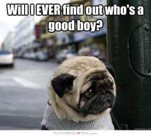 Will ever find out who's a good boy? Picture Quote #1