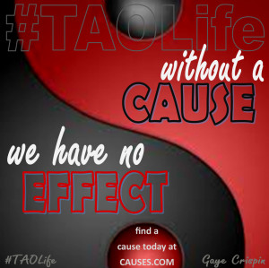 ... no effect. Find a cause today at Causes.com @causes #quote #taolife