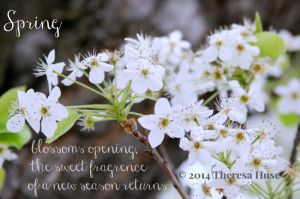 Spring_dogwood-blossom-and-a-spring-quote_Theresa-Huse-2014-7303.jpg