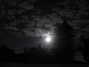 Goodnight Moon Quotes Goodnight moon!