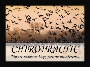 Chiropractic Quotes, Epigrams and Sayings Posters