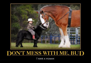 Don't Mess With Me, I've A Human!